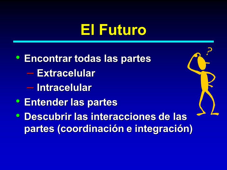 El Futuro Encontrar todas las partes Extracelular Intracelular