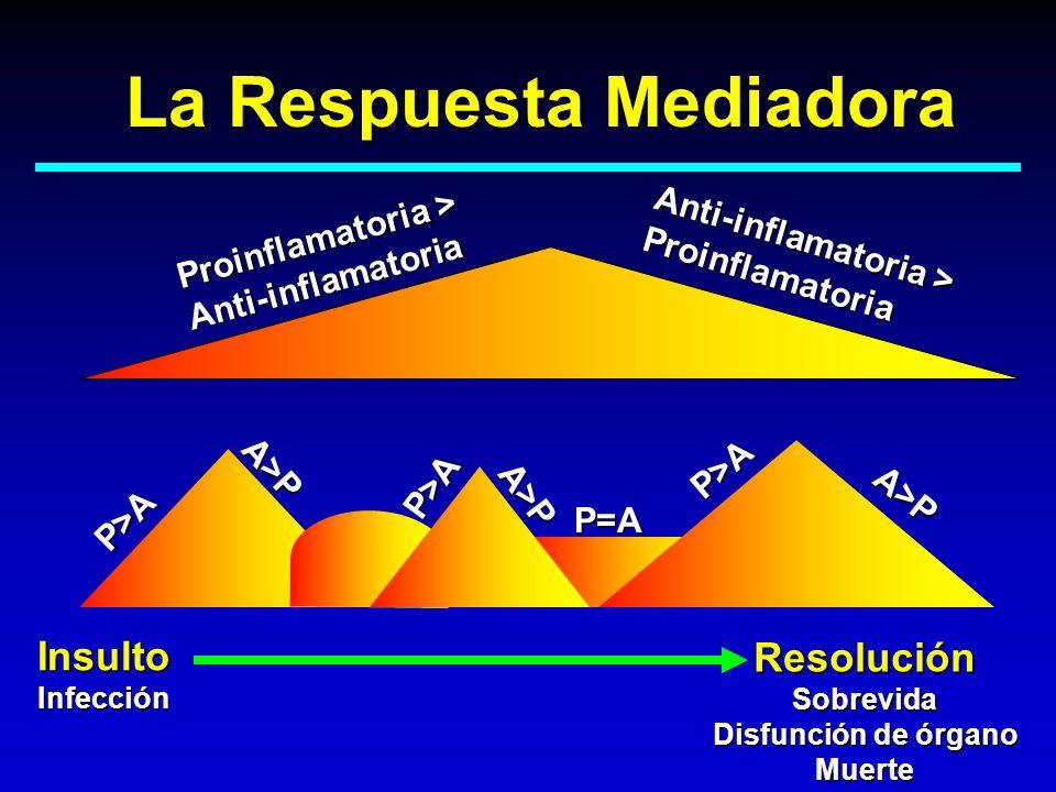 La Respuesta Mediadora