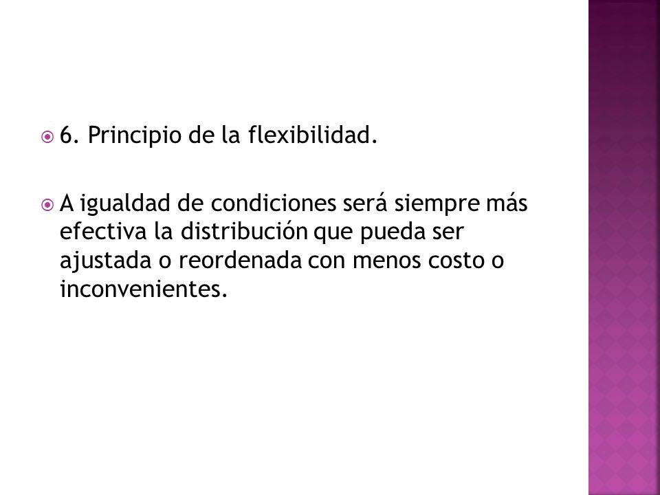 6. Principio de la flexibilidad.
