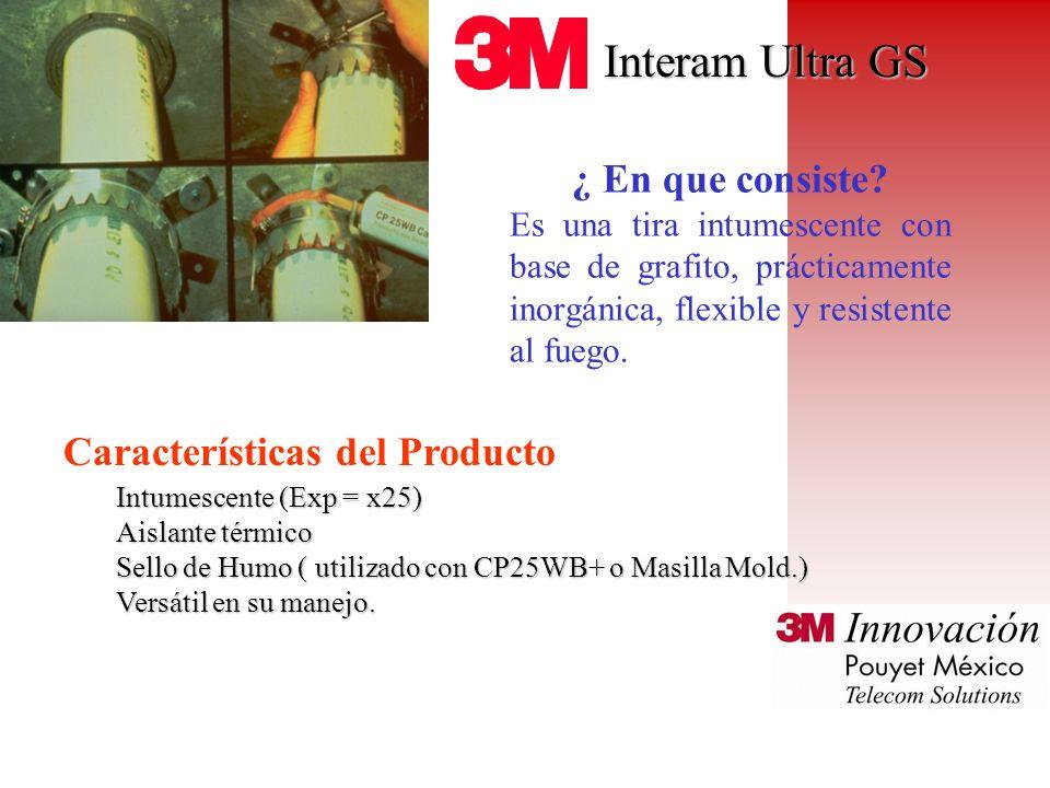 Interam Ultra GS ¿ En que consiste Características del Producto