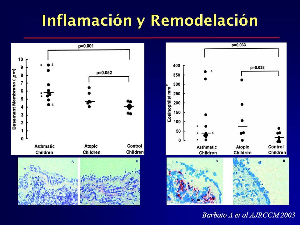 Inflamación y Remodelación