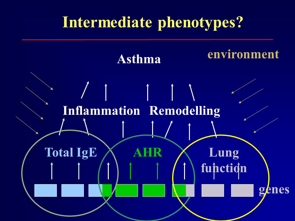 Intermediate phenotypes