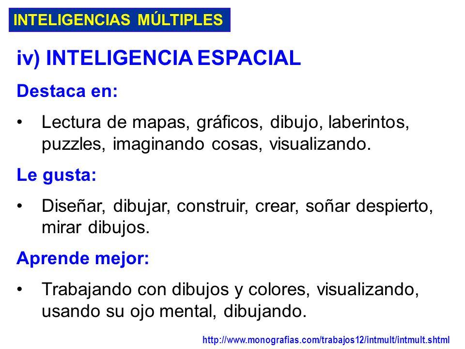 iv) INTELIGENCIA ESPACIAL