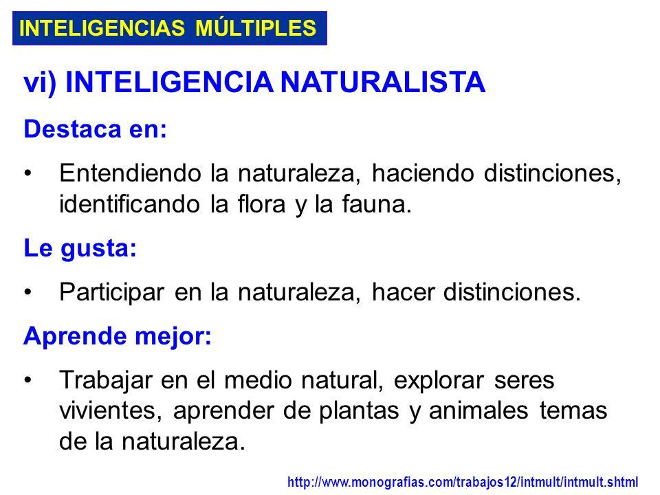 vi) INTELIGENCIA NATURALISTA