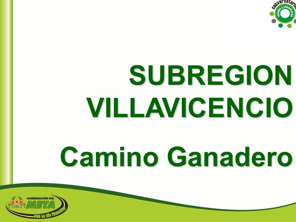 SUBREGION VILLAVICENCIO
