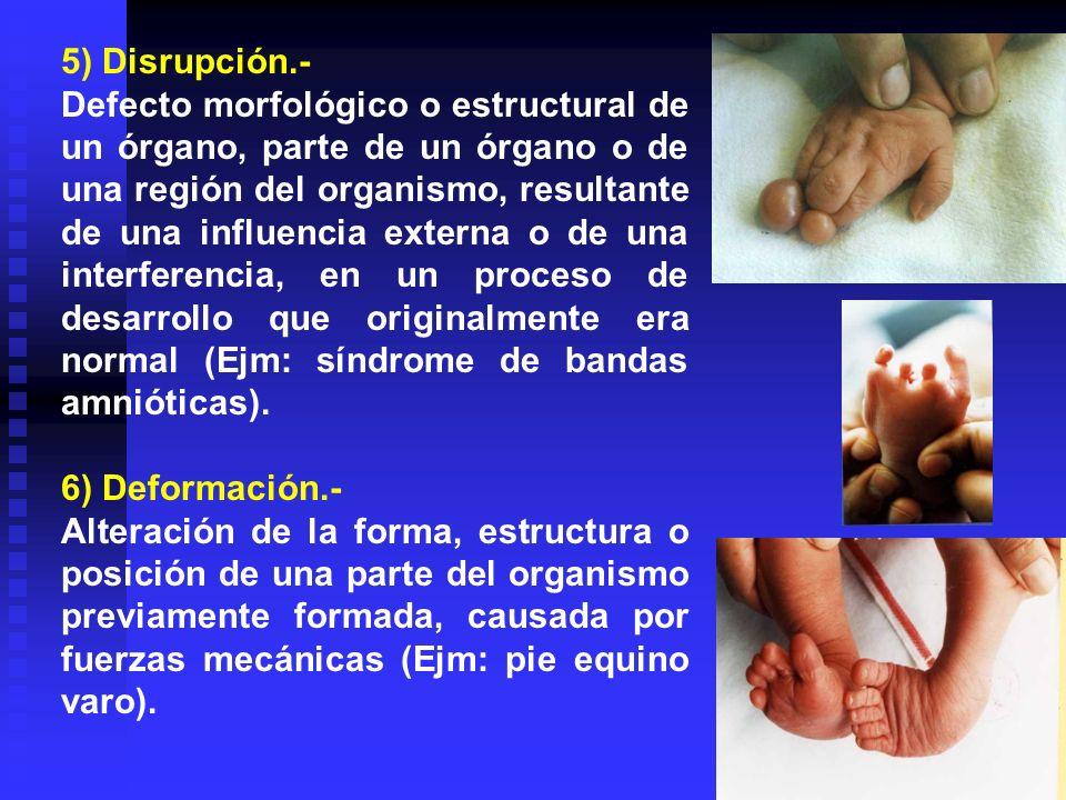 5) Disrupción.-
