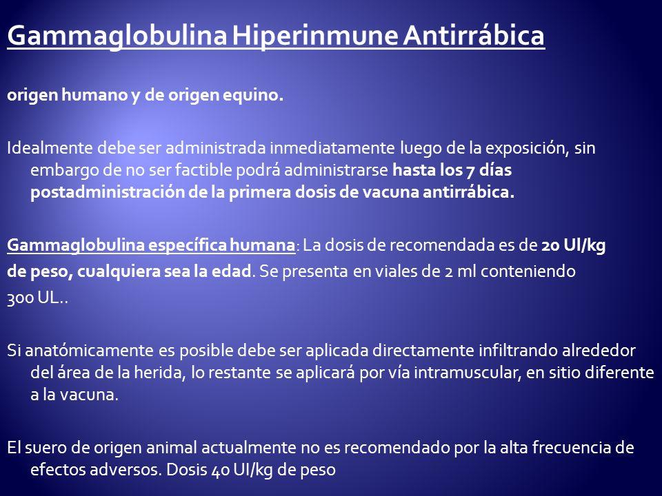 Gammaglobulina Hiperinmune Antirrábica