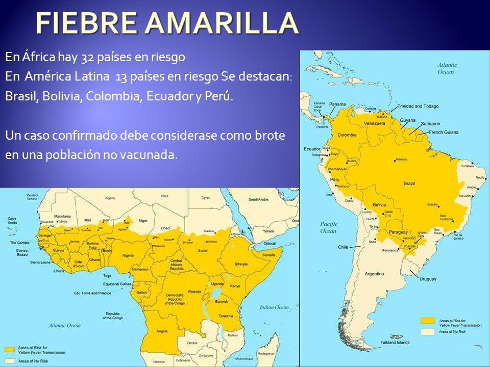 FIEBRE AMARILLA En África hay 32 países en riesgo