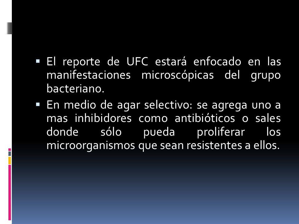El reporte de UFC estará enfocado en las manifestaciones microscópicas del grupo bacteriano.