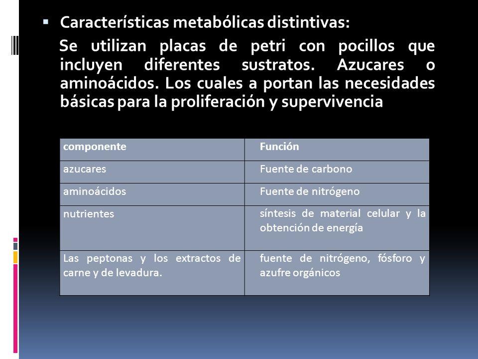 Características metabólicas distintivas: