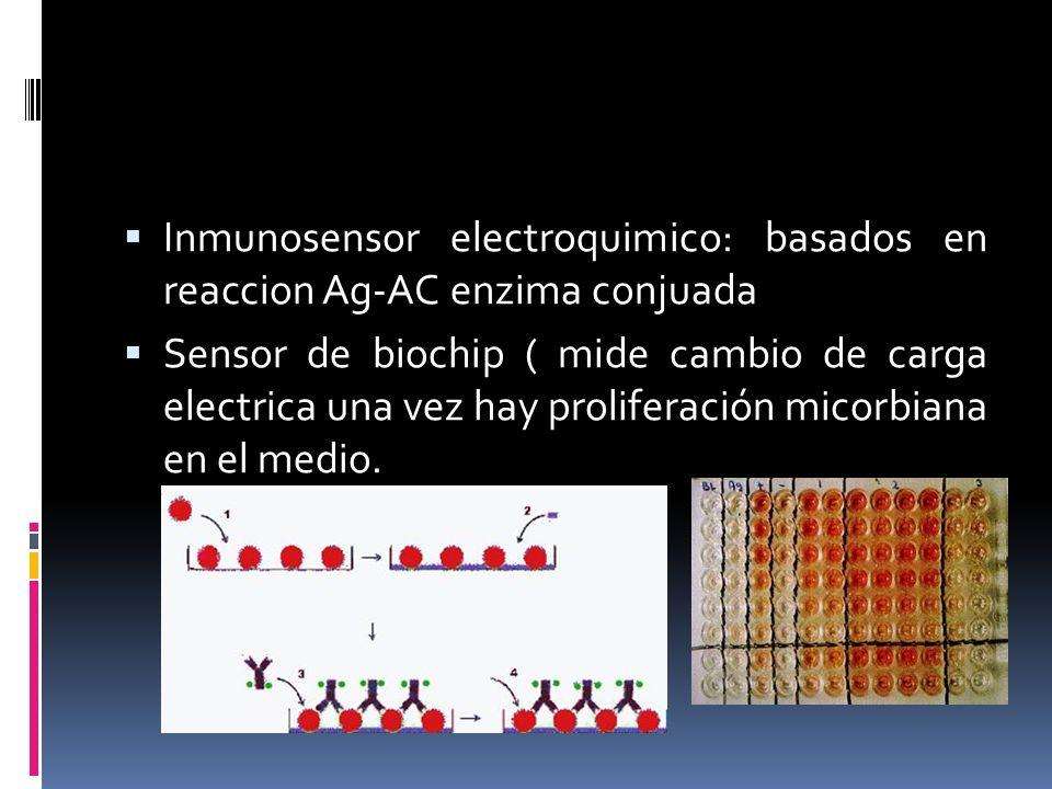 Inmunosensor electroquimico: basados en reaccion Ag-AC enzima conjuada