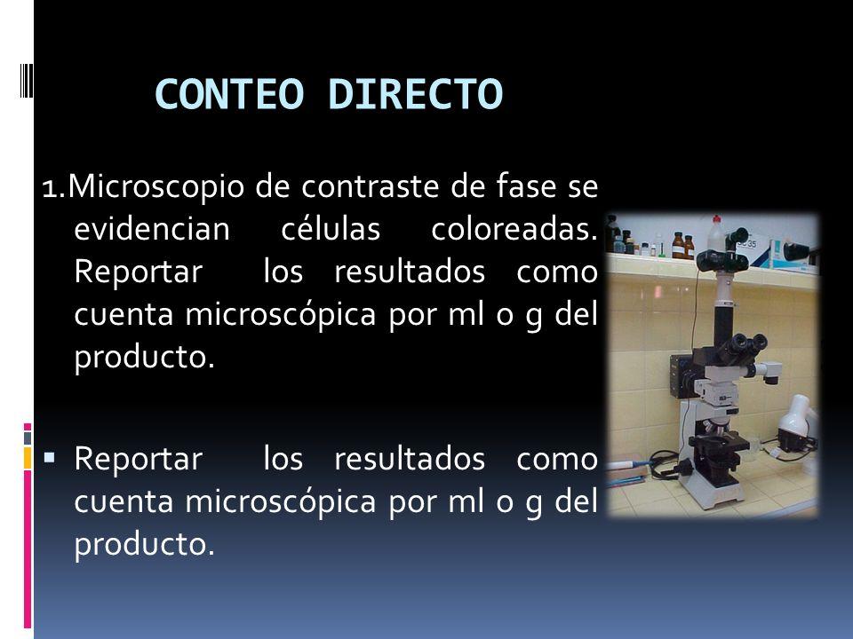 CONTEO DIRECTO