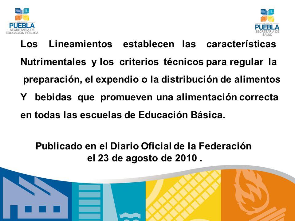 Publicado en el Diario Oficial de la Federación