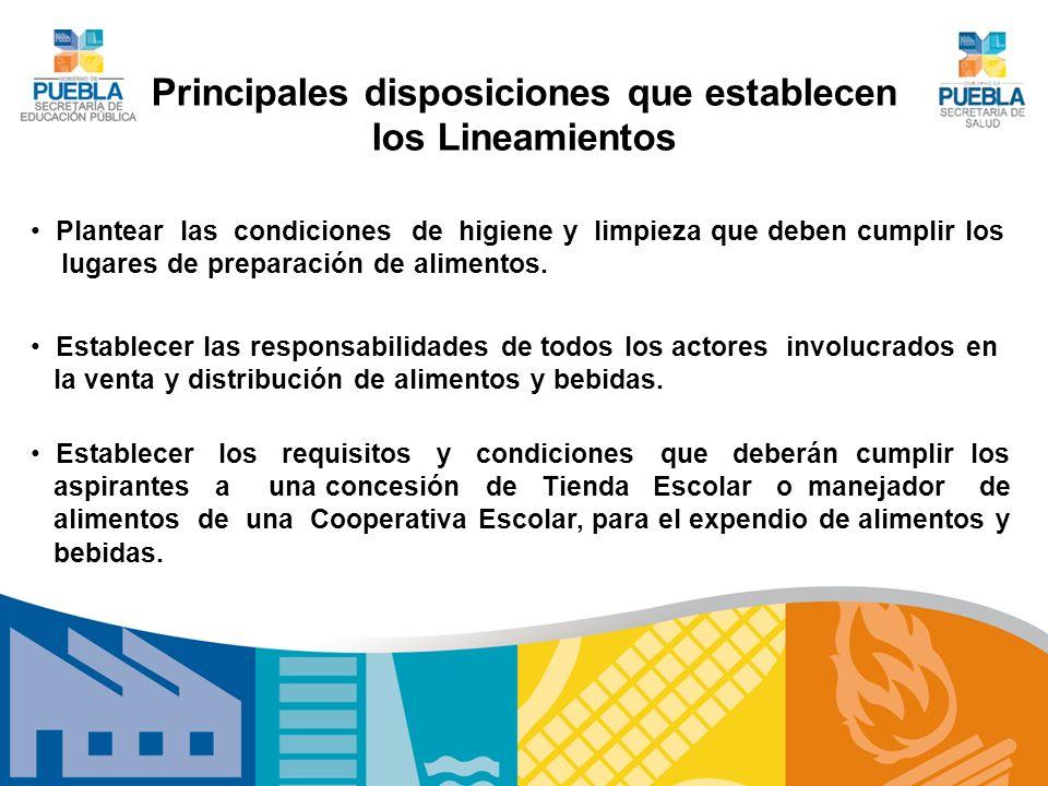 Principales disposiciones que establecen los Lineamientos