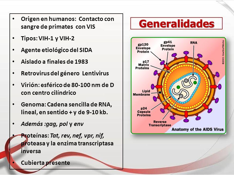 Origen en humanos: Contacto con sangre de primates con VIS