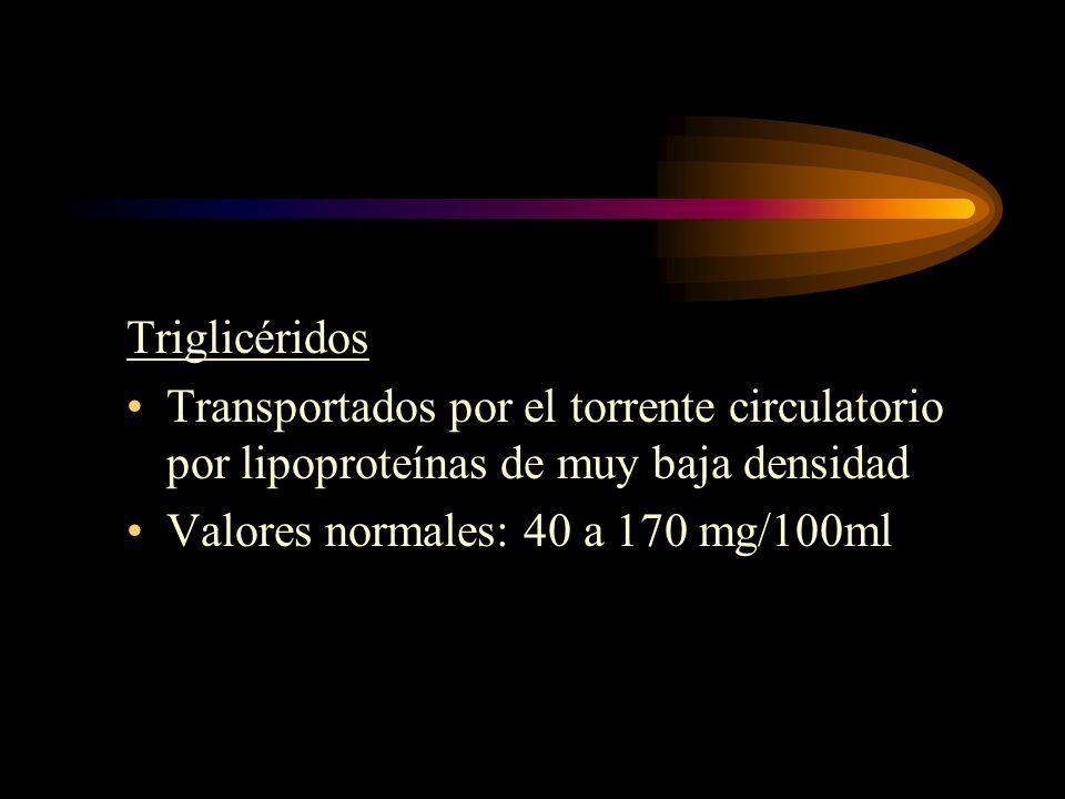 Triglicéridos Transportados por el torrente circulatorio por lipoproteínas de muy baja densidad.