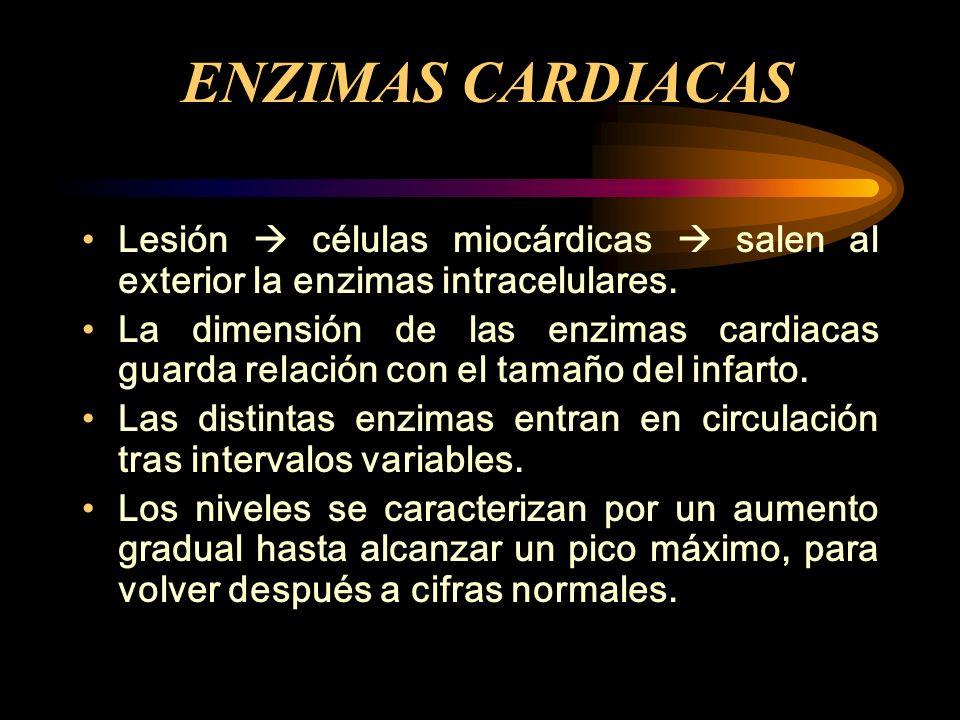 ENZIMAS CARDIACAS Lesión  células miocárdicas  salen al exterior la enzimas intracelulares.