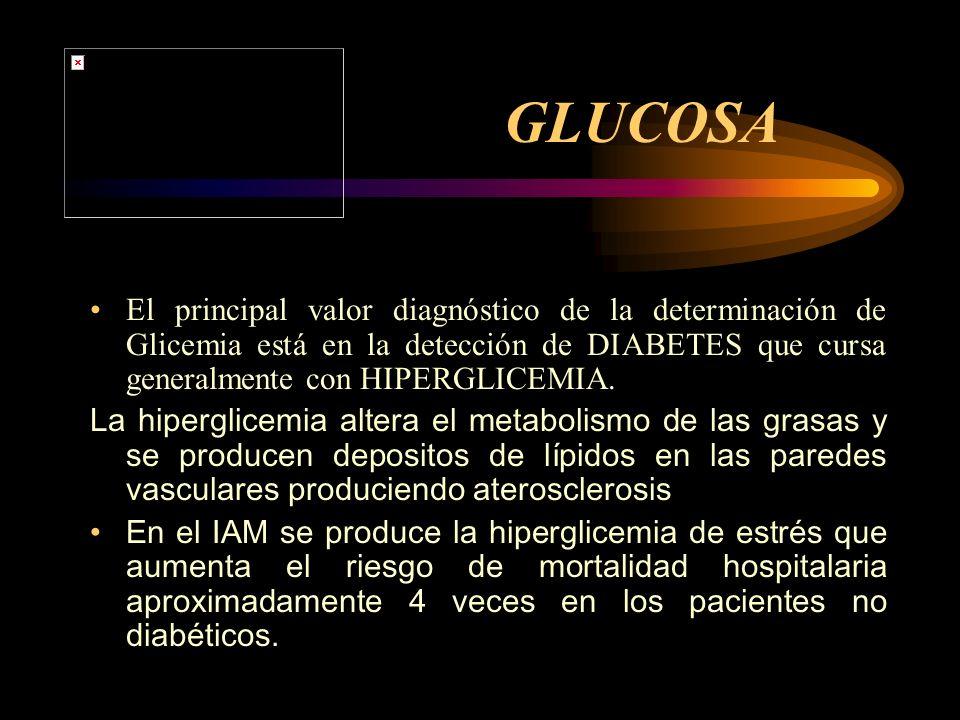 GLUCOSA El principal valor diagnóstico de la determinación de Glicemia está en la detección de DIABETES que cursa generalmente con HIPERGLICEMIA.