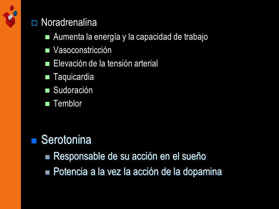Serotonina Noradrenalina Responsable de su acción en el sueño
