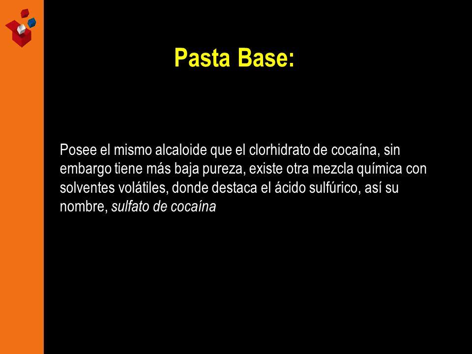 Pasta Base: