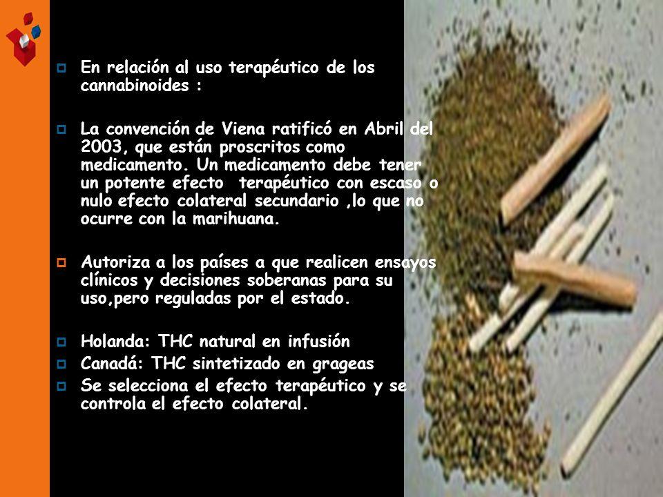 En relación al uso terapéutico de los cannabinoides :