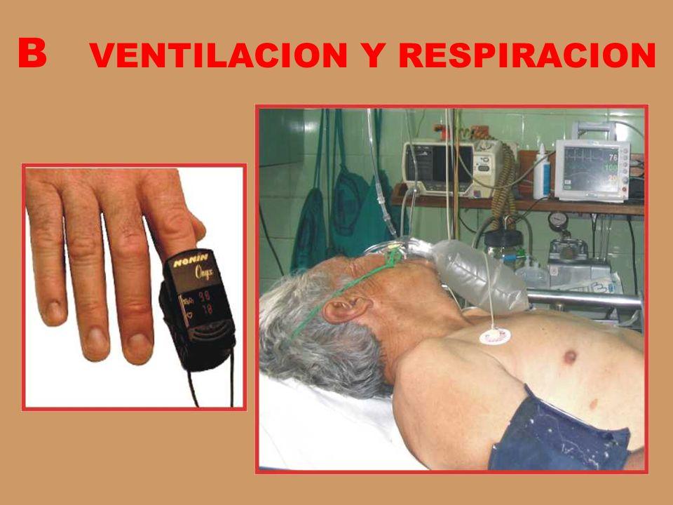 B VENTILACION Y RESPIRACION