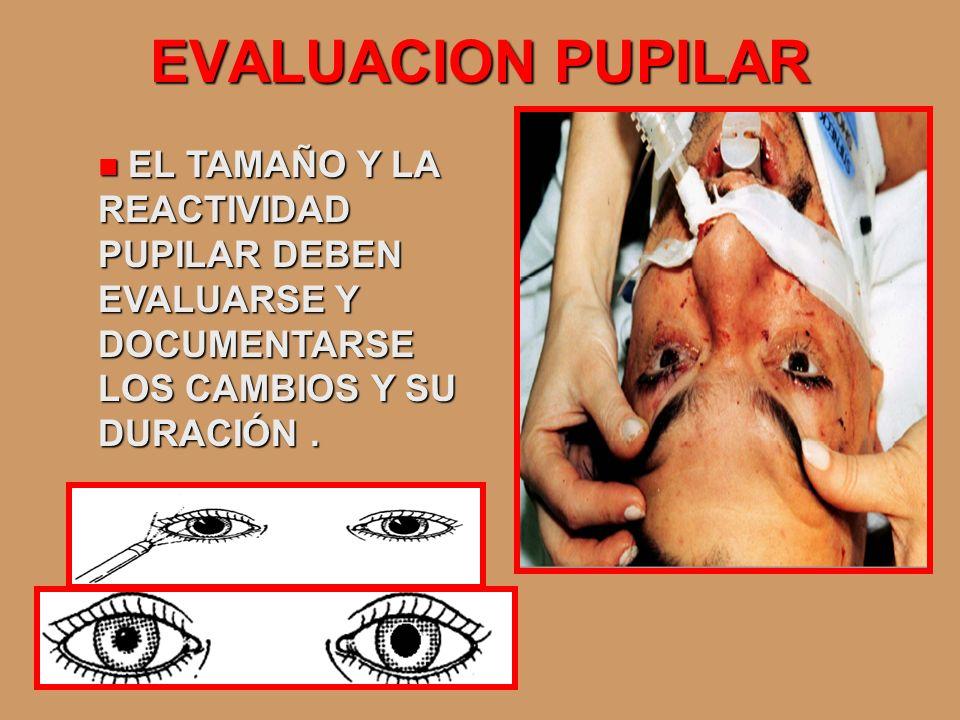 EVALUACION PUPILAREL TAMAÑO Y LA REACTIVIDAD PUPILAR DEBEN EVALUARSE Y DOCUMENTARSE LOS CAMBIOS Y SU DURACIÓN .