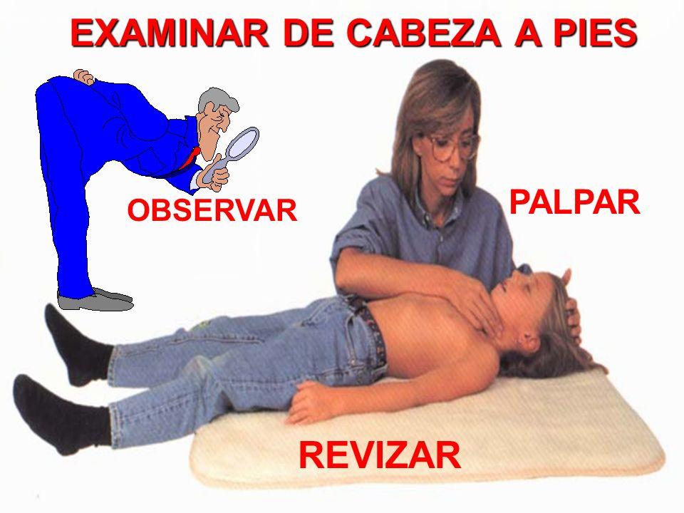 EXAMINAR DE CABEZA A PIES