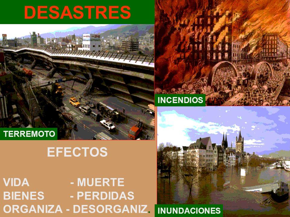 DESASTRES EFECTOS VIDA - MUERTE BIENES - PERDIDAS