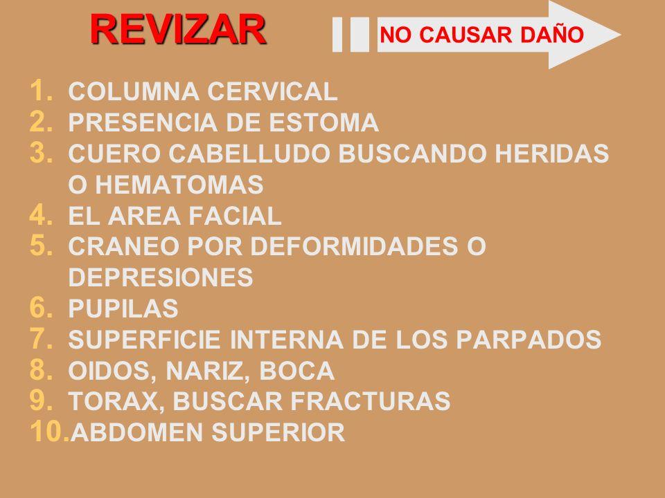 REVIZAR COLUMNA CERVICAL PRESENCIA DE ESTOMA