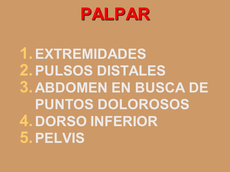 PALPAR EXTREMIDADES PULSOS DISTALES