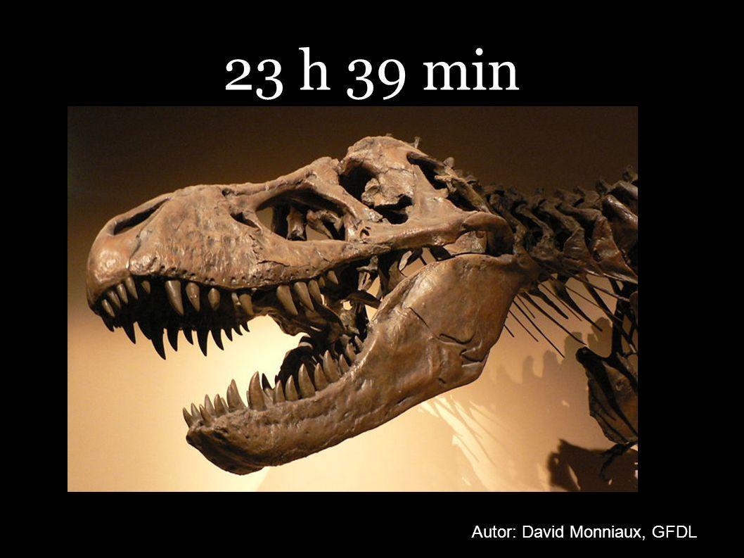 23 h 39 min Autor: David Monniaux, GFDL