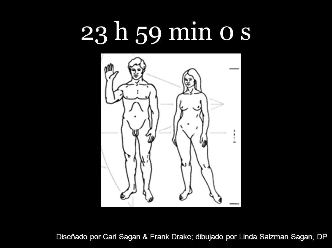 23 h 59 min 0 s Diseñado por Carl Sagan & Frank Drake; dibujado por Linda Salzman Sagan, DP