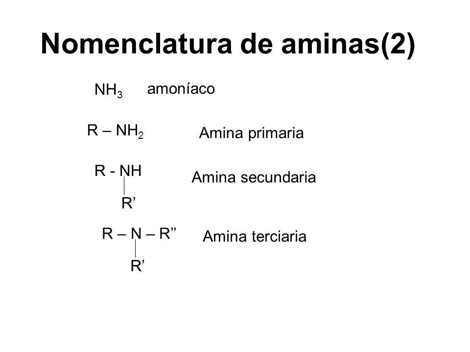 Nomenclatura de aminas(2)