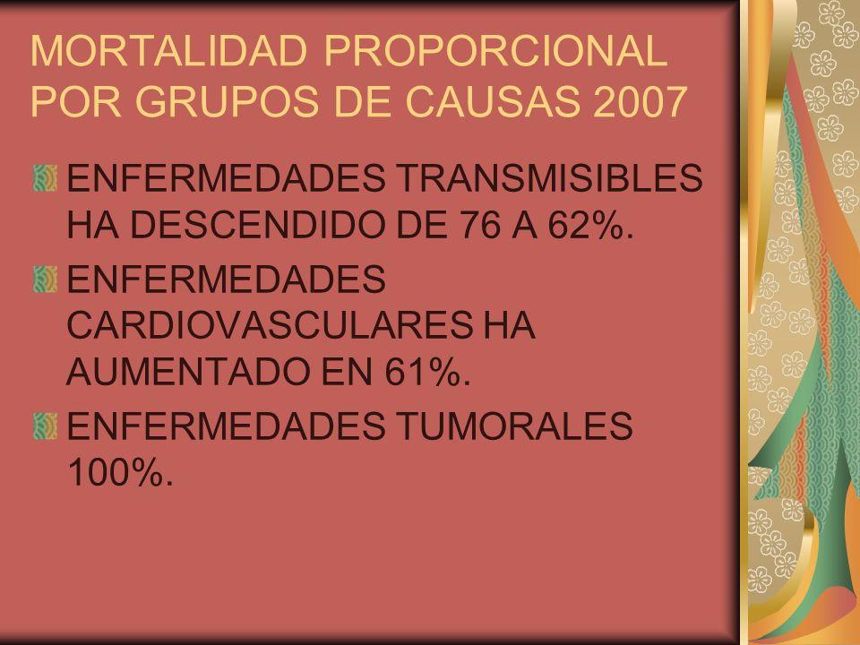 MORTALIDAD PROPORCIONAL POR GRUPOS DE CAUSAS 2007