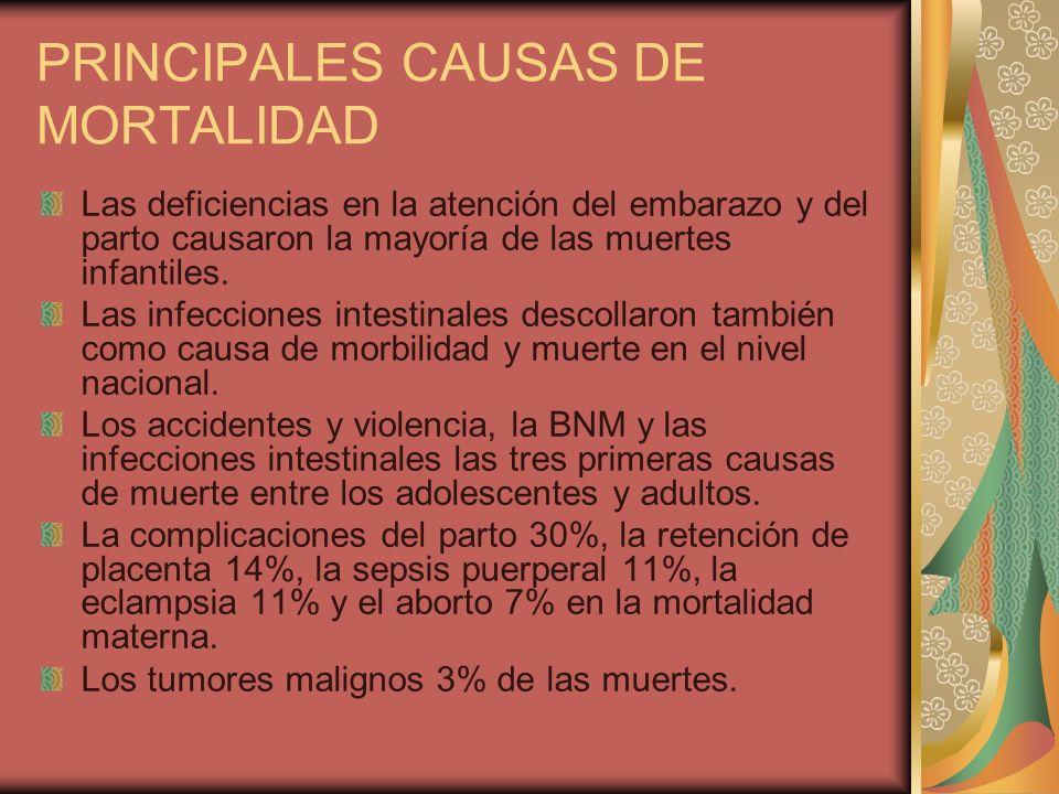 PRINCIPALES CAUSAS DE MORTALIDAD