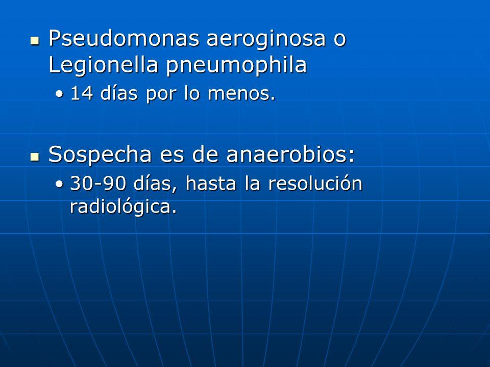 Pseudomonas aeroginosa o Legionella pneumophila