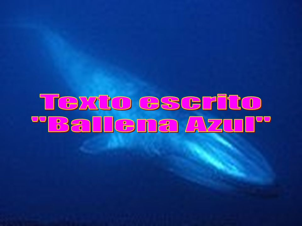 Texto escrito Ballena Azul