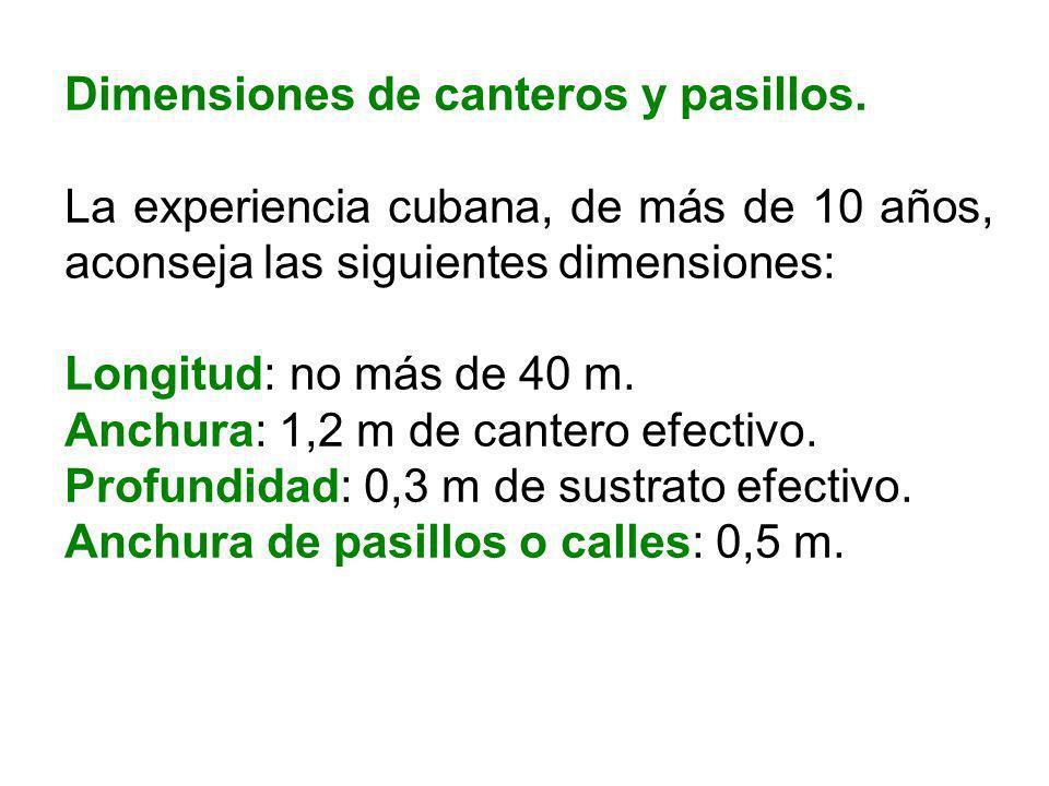 Dimensiones de canteros y pasillos.