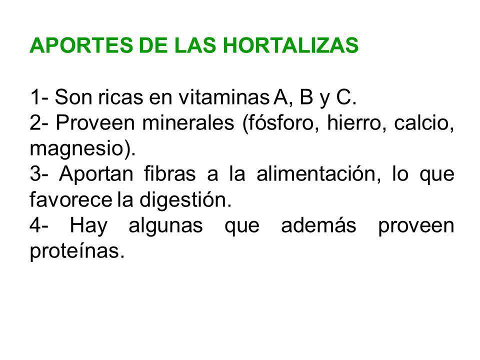 APORTES DE LAS HORTALIZAS
