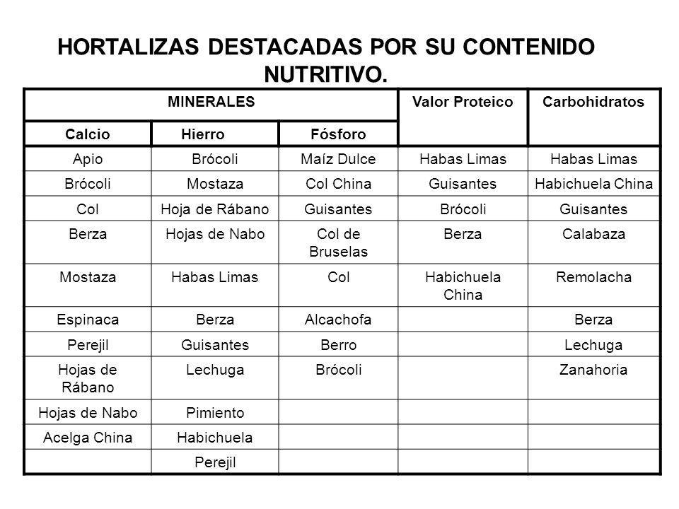 HORTALIZAS DESTACADAS POR SU CONTENIDO NUTRITIVO.