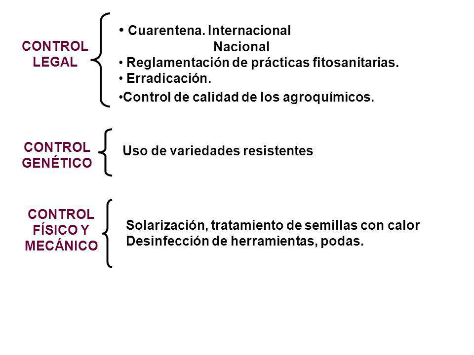Cuarentena. Internacional Nacional