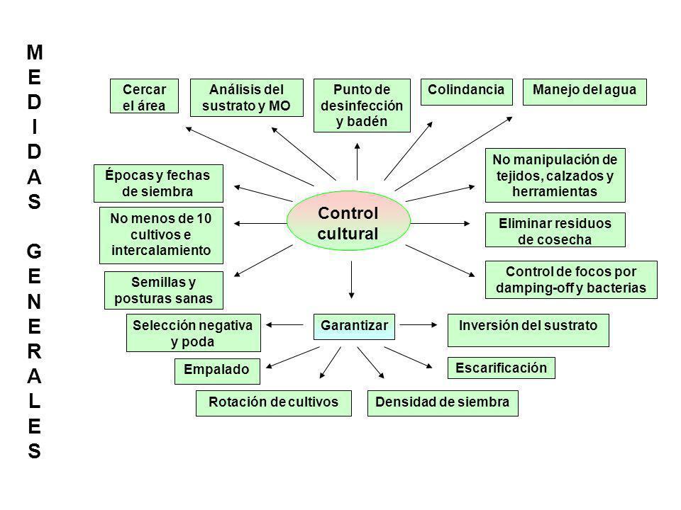 MED IDAS GENERALES Control cultural Cercar el área