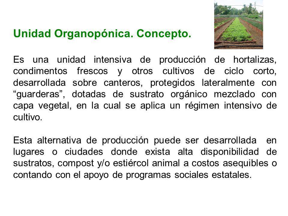 Unidad Organopónica. Concepto.