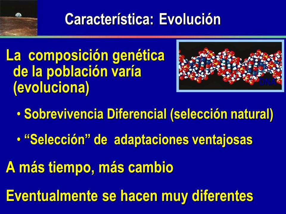 Característica: Evolución