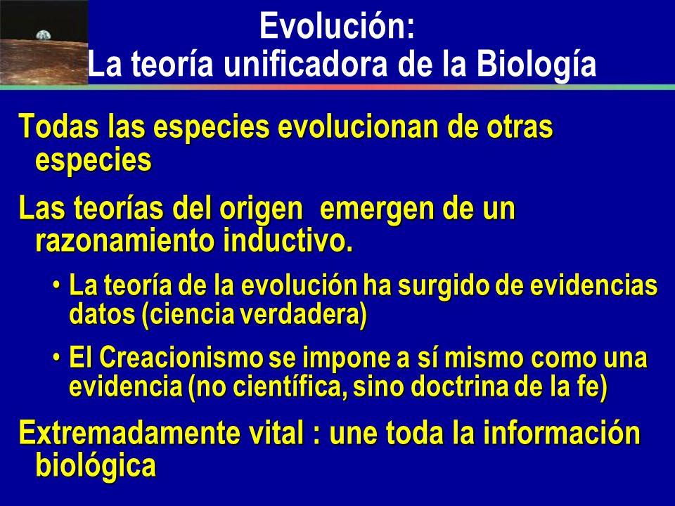 Evolución: La teoría unificadora de la Biología