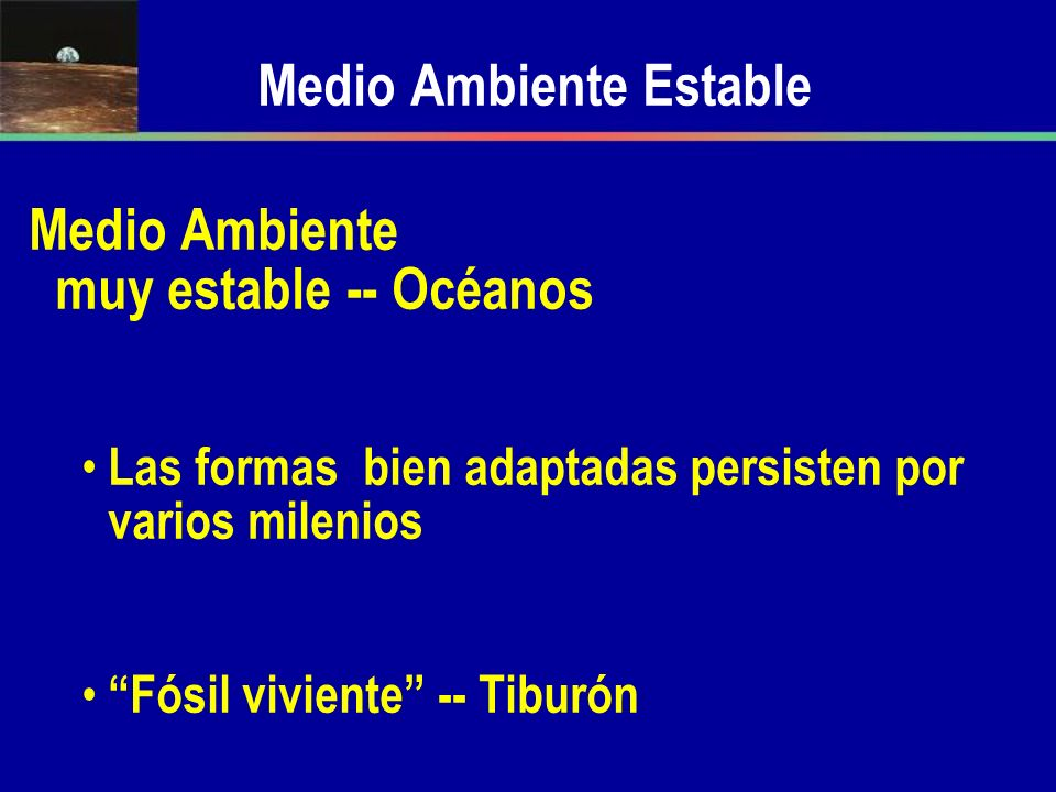 Medio Ambiente Estable