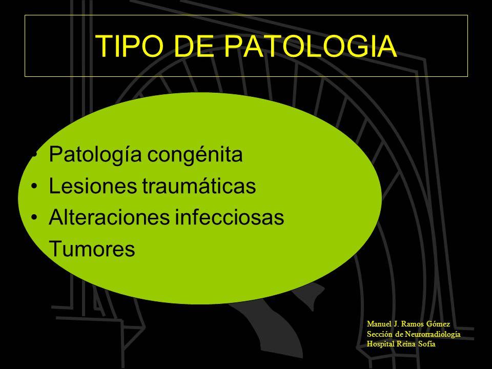TIPO DE PATOLOGIA Patología congénita Lesiones traumáticas