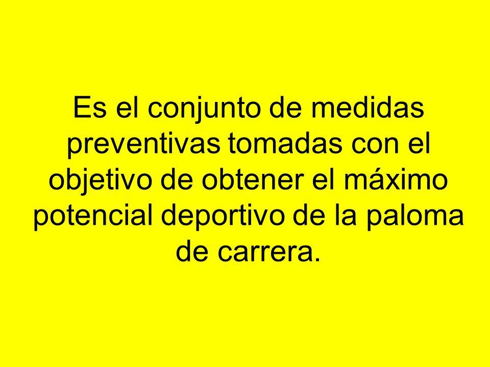 Es el conjunto de medidas preventivas tomadas con el objetivo de obtener el máximo potencial deportivo de la paloma de carrera.
