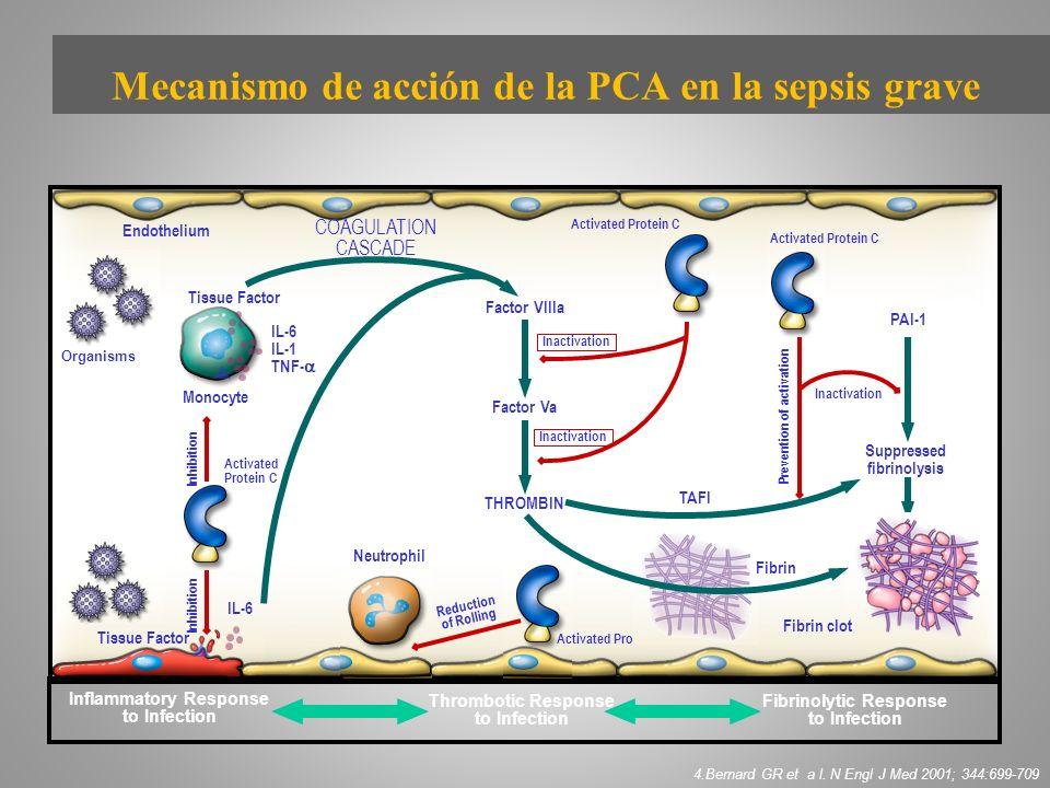 Mecanismo de acción de la PCA en la sepsis grave
